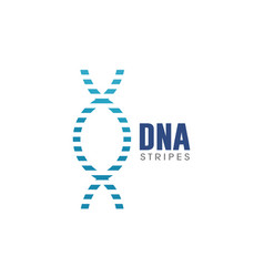 dna stripes logo vector image
