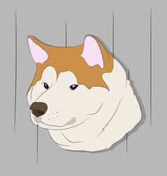 dog portrait profile look down vector image
