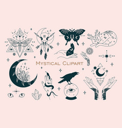 Mystical celestial bundle outline witchy drawing vector