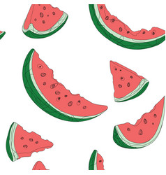 set slices watermelon drawing by vector image
