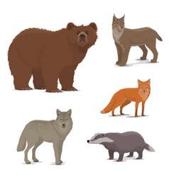 Wild forest animals fox badger lynx bear icons vector