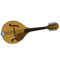 Classic country mandolin vector