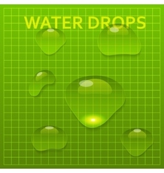 Set of transparent water bright drops vector image