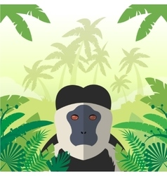 Colobus on the Jungle Background vector