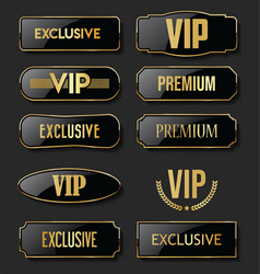 exclusive vip and premium black and gold labels vector image