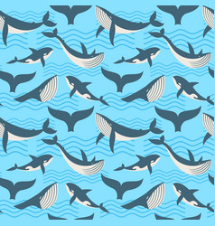 seamless pattern with whale in ocean waves vector image