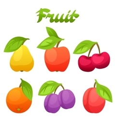 Set of stylized fresh fruits on white background vector image