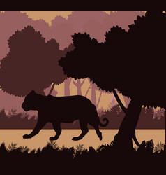 Tiger in the jungle black silhouette vector