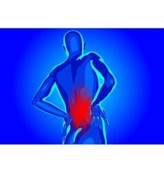 lower back pain vector image