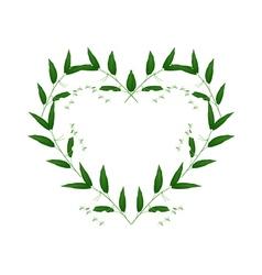 White Solomons Seal Flowers in A Heart Shape vector image