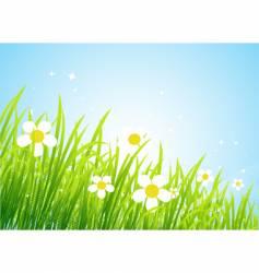 spring meadow vector image