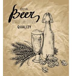 Beer hops glass bottle ears vector