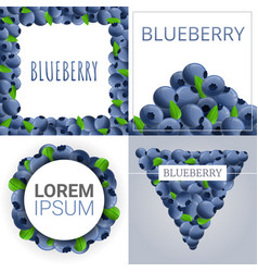 Bilberry banner set cartoon style vector