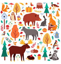 cartoon autumn animals cute woodland birds and vector image