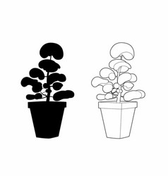 Design and shade of a shrub in a pot vector