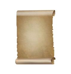 old paper scrolls banner vector image