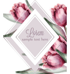 pink tulip flowers card watercolor spring vector image