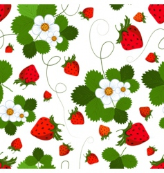 seamless pattern with a strawberry vector image