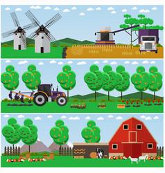 Set farm wheat field countryside vector