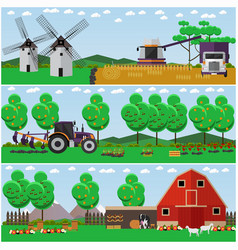 set of farm wheat field countryside vector image