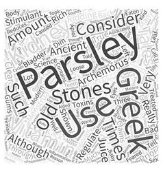 Parsley Word Cloud Concept vector image vector image