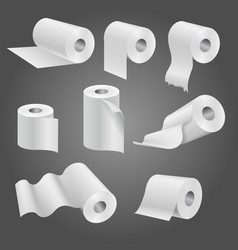 Toilet paper roll white soft kitchen towels vector