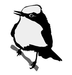 black silhouette of flycatcher vector image vector image