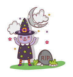 cat with halloween costume vector image