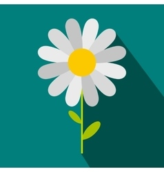 Chamomile icon in flat style vector image