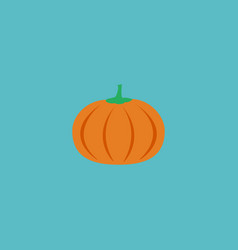 flat icon pumpkin element of vector image