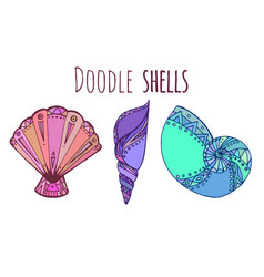 set of colorful doodle of seashell for your vector image