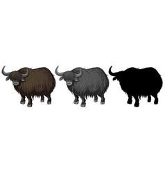 Set of yak character vector
