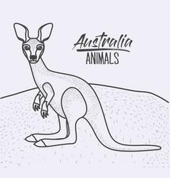 australia animals poster with kangaroo outdoor vector image