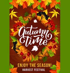 Autumn season harvest festival invitation poster vector