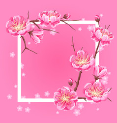 frame with sakura or cherry blossom floral vector image