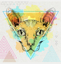 hipster realistic animal sphynx cat vector image