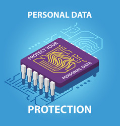 protect your personal data isometric vector image