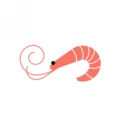 Shrimp icon Prawn vector image