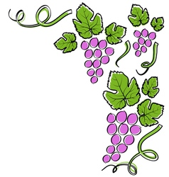 Abstract line grape frame vector image vector image