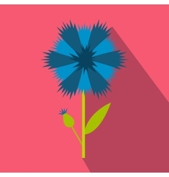 Blue cornflower icon flat style vector image