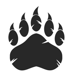 black bear paw with claws vector image