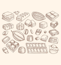 chocolate drawn engraved pictures chocol and vector image