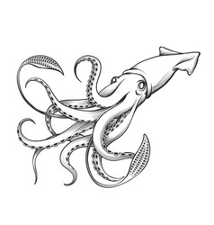 Giant squid engraving vector