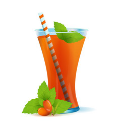 healthy sea buckthorn drink with mint vector image
