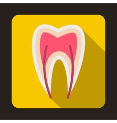 Tooth cross section icon flat style vector image