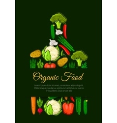 Organic vegetables food emblem vector image vector image