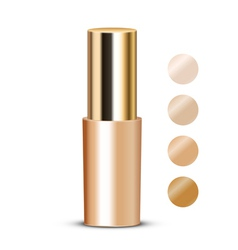 foundation with swatches vector image