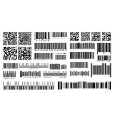 bar code product barcodes and qr codes for vector image