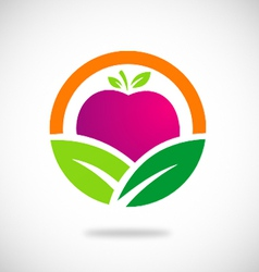 eco vegetarian fruit logo vector image