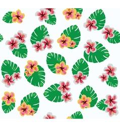 hawaii flowers vector image